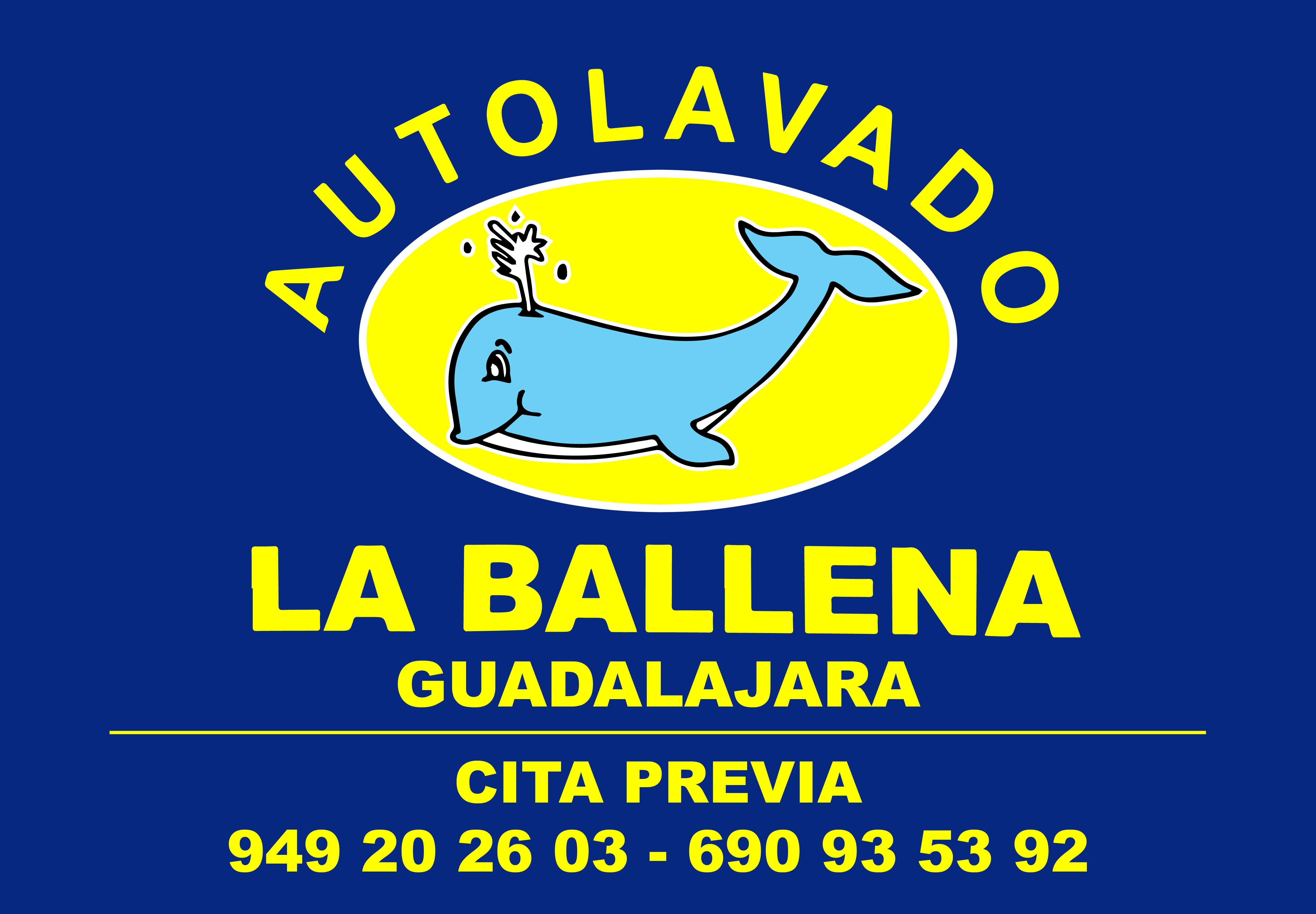Lavar tu coche en Guadalajara nunca fue tan sencillo